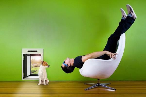 A kutya kiszökhet, az energia nem! Új passzívház-komponens: lengőajtó házi kedvenceknek